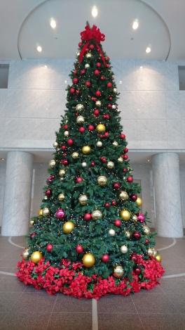 アクシスビルロビーにクリスマスツリーが登場しました!