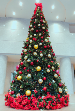 堂島アクシスビル ロビーにクリスマスツリーが登場しました!!