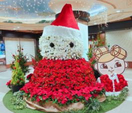 ドーチカもクリスマスムードに♪巨大フラワースノーマンが登場しました‼