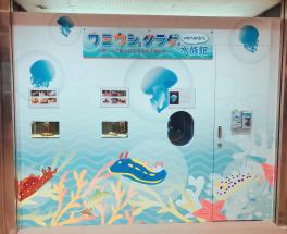 ドーチカに期間限定の水族館が登場!