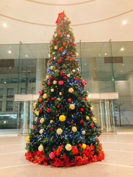 【SYNTH(シンス)堂島ブログ】クリスマスシーズンがやってきました!