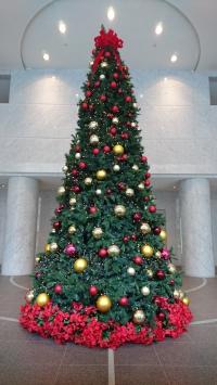 SYNTHブログ更新しました!(アクシスビルロビーにクリスマスツリーが登場しました!)