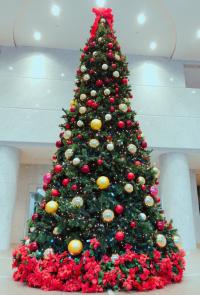SYNTHブログを更新しました!(今年も堂島アクシスビルロビーにクリスマスツリーが登場しました!)