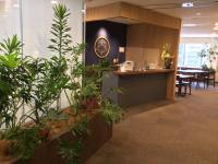 SYNTH(シンス)ブログを更新しました(新しい植物がSYNTH(シンス)にやってきました!part 12)