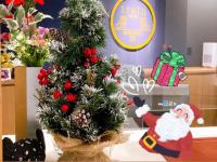 【SYNTH(シンス)堂島ブログ】を更新しました(クリスマスツリー設置しました♪)